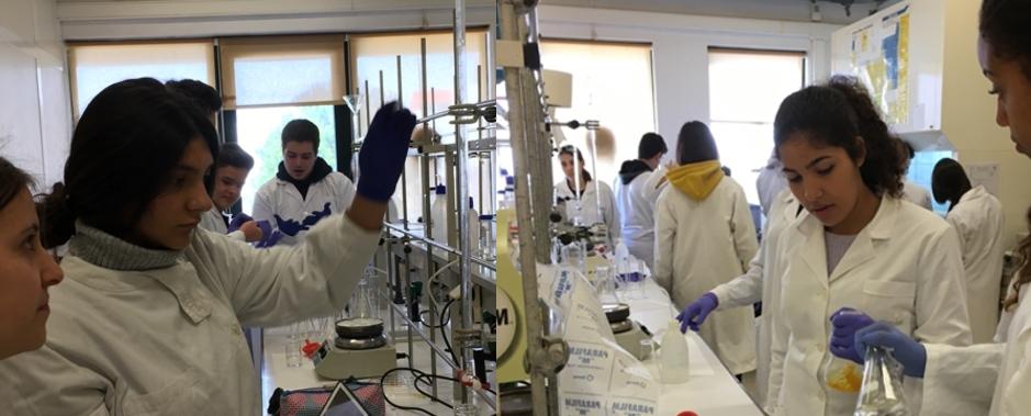 """Workshop """"Este azeite tem peróxidos?"""" desenvolvido no Egas Moniz – Cooperativa de Ensino Superior pelos alunos de química de 12° ano."""