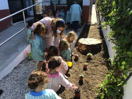 Fomos bons jardineiros!