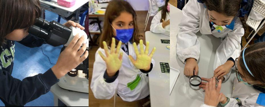 Em tempos de pandemia… limpo mais limpo não há!